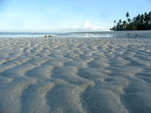 102-Marlin-Resort-Beachfront1