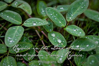Leaves-and-dewdrops-copy1